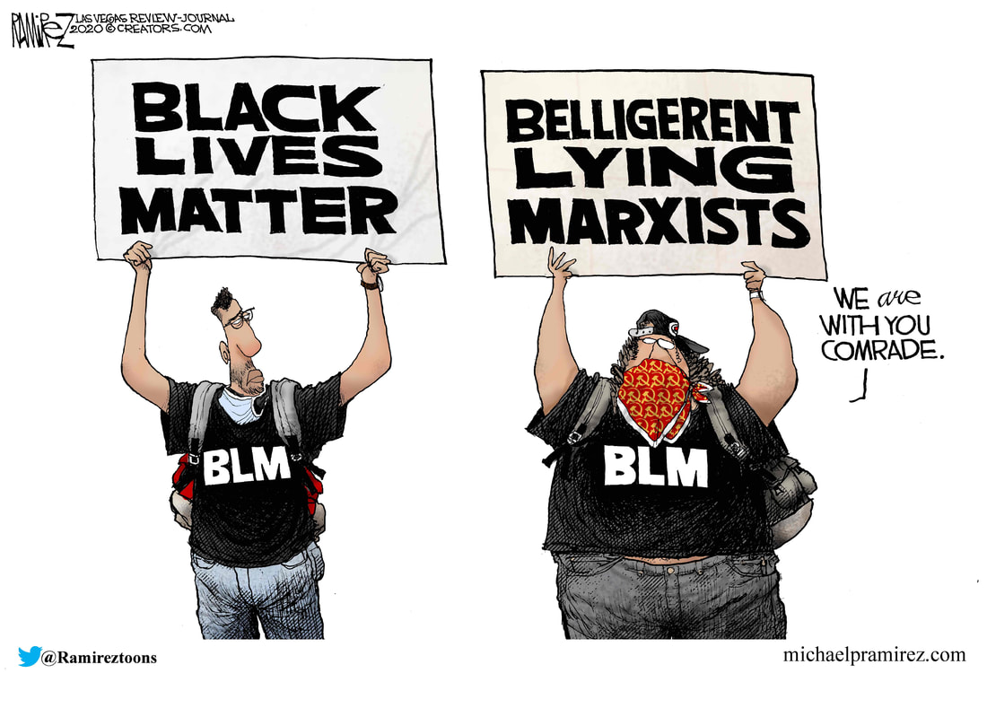 BLM Cartoon